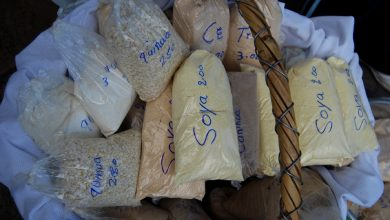 The Seven Andean Flours