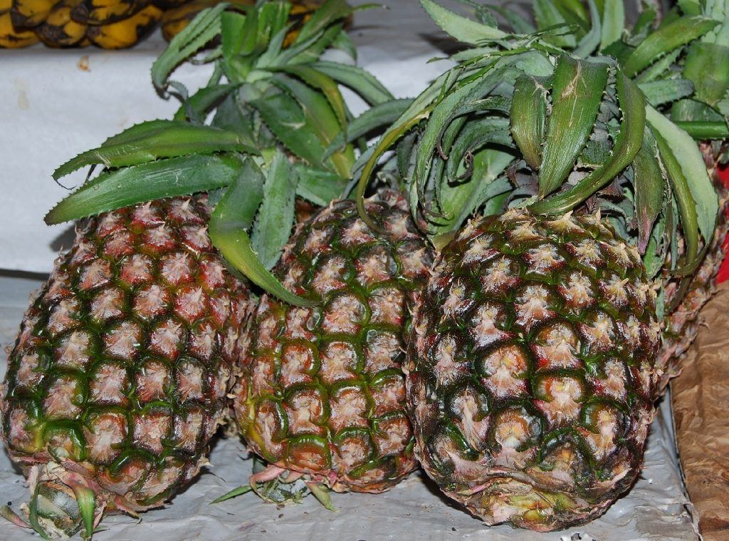 Three Pineapples in a Row