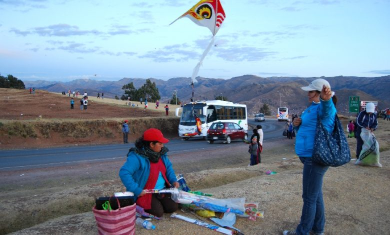 Fly Kites for Sale