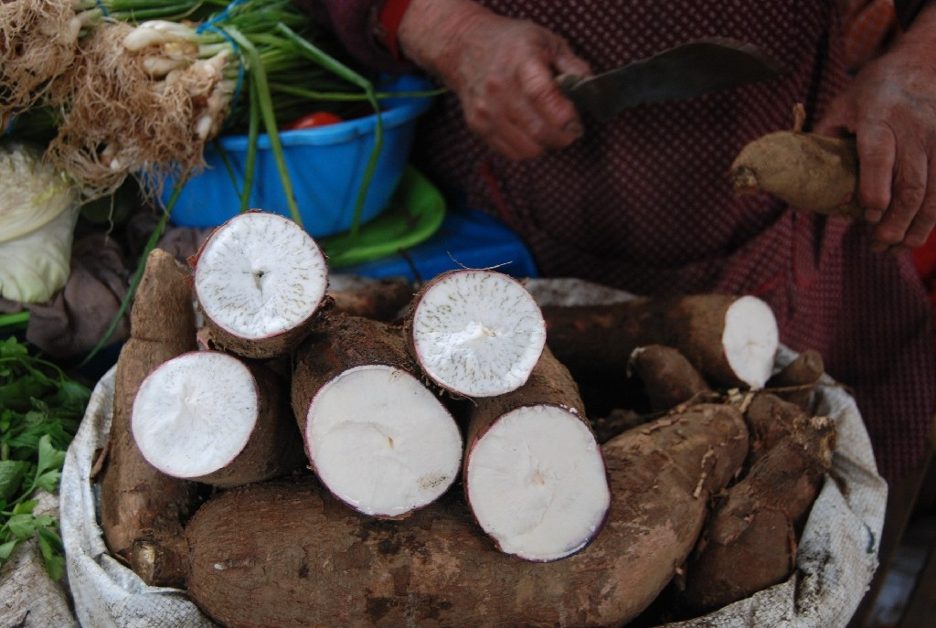 Fresh yuca for Sale in the Morning