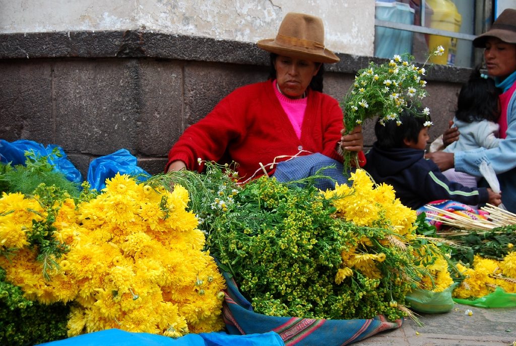 Yellow Flowers to Bring Good Fortune