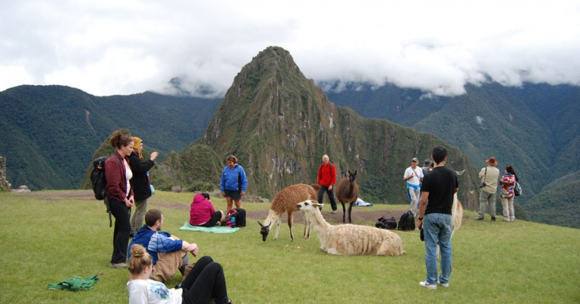 Tourists at Machu Picchu