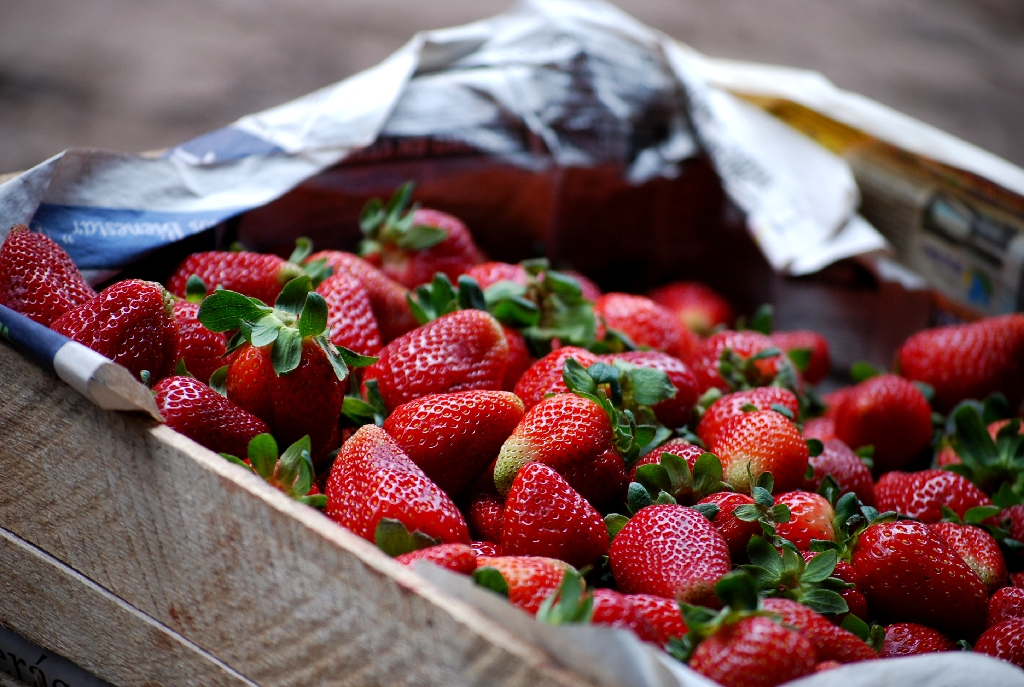 Fresh Strawberries to Make Frutillada (Walter Coraza Morveli)