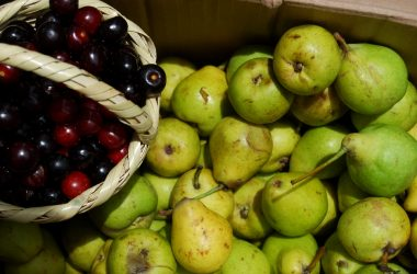 Small Pears and Capulí Fruit