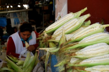 Fresh Corn from the Sacred Valley (Walter Coraza Morveli)