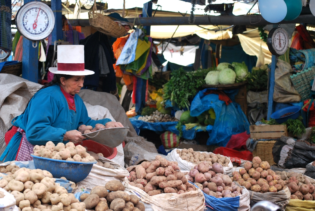 Potatoes in the Market