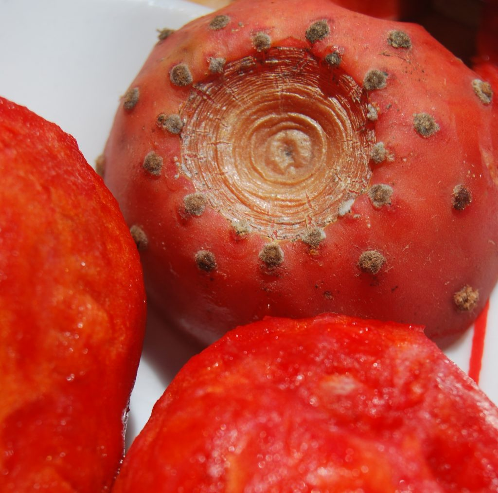 Cactus Pear, Tuna Fruit