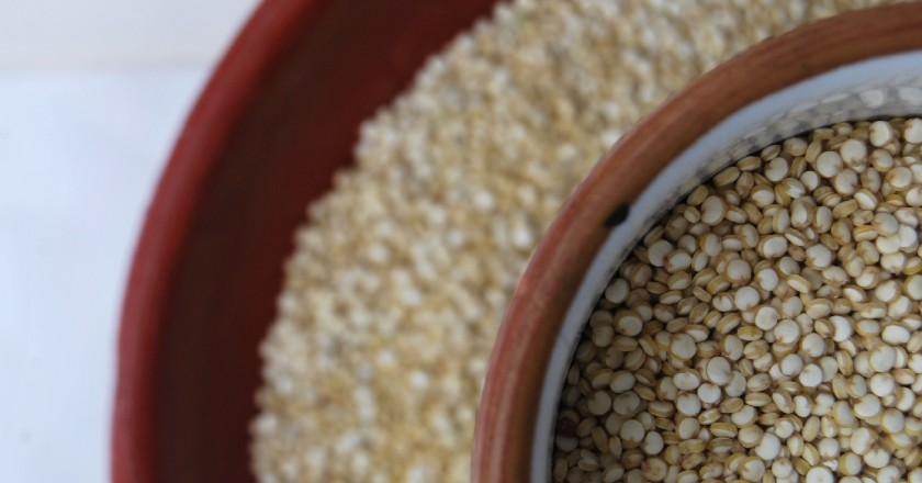 Quinoa Seeds (Photo: Walter Coraza Morveli)