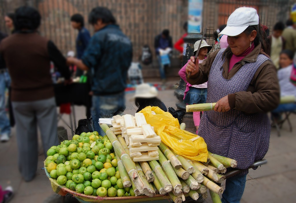 Sugar Cane Season in Cuzco
