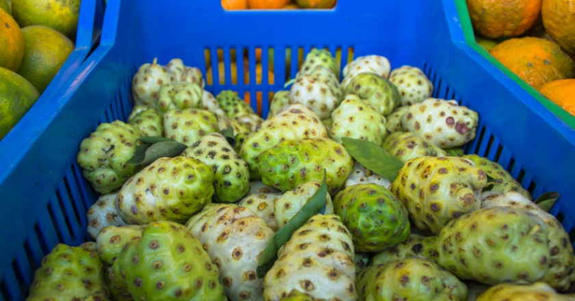 Noni, a Strange yet Healthful Fruit (Wayra)