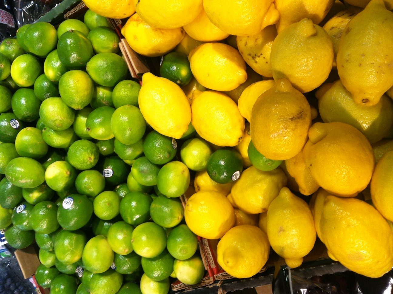 Lemons and Limes in the United States (David Knowlton)