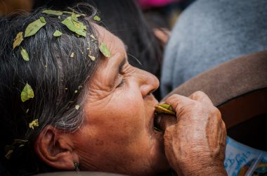Chewing Coca Leaves in a Special Moment (Walter Coraza)
