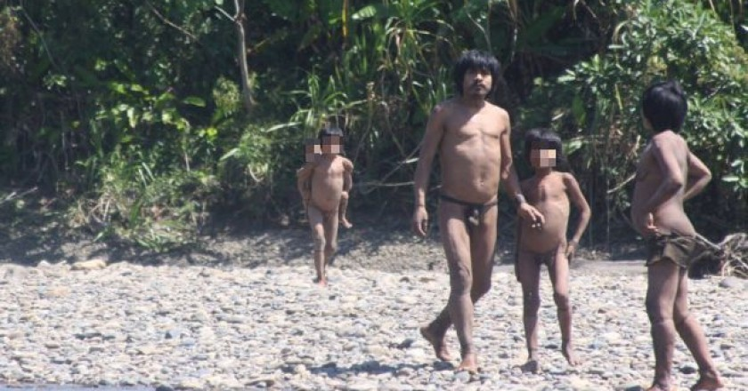 Uncontacted Tribes in the Jungle