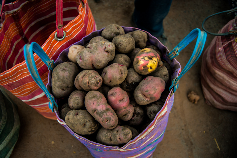 Potatoes in Cuzco (Walter Coraza Morveli)