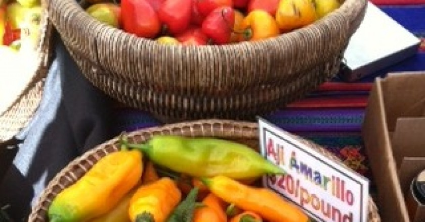 Peruvian Peppers in the San Francisco Farmer's Market (David Knowlton)