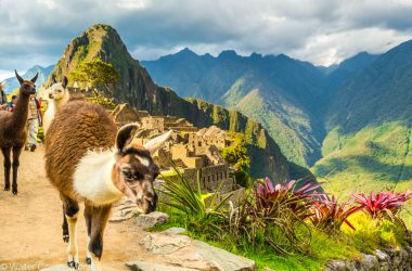 A Simple in Machu Picchu (Walter Coraza Morveli)