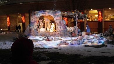 Large Nativity in the Snow in the United States