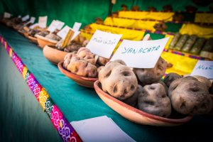 Photo of National Day of the Potato