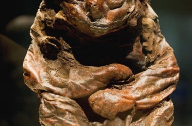 The Detmold Child (Mummies of the World)