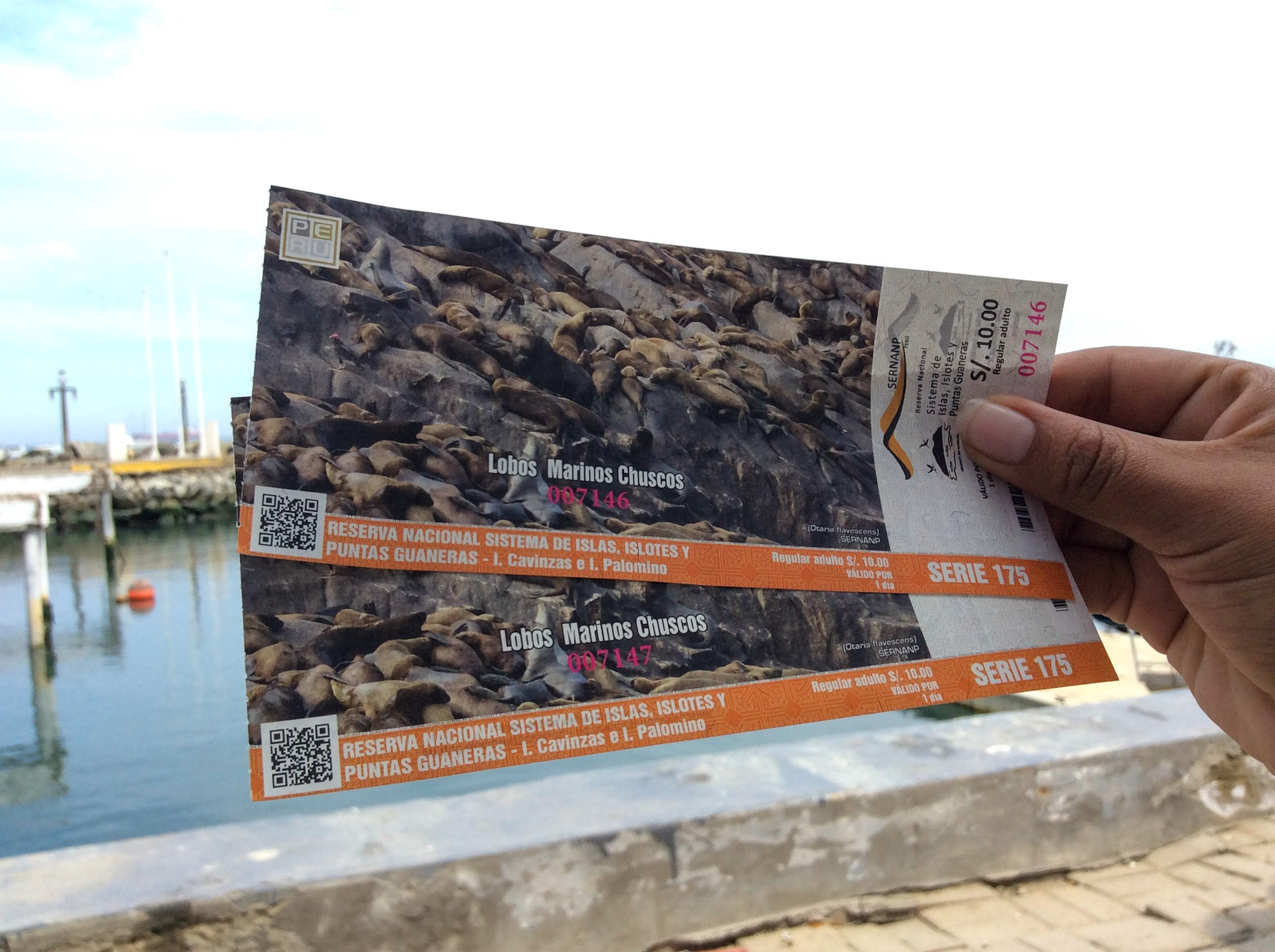 Tickets for the Excurcion (Walter Coraza Morveli)