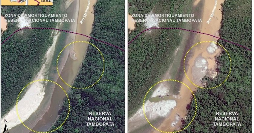 Illegal Gold Miners Deforest Tambopata Reserve